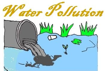 Cause & Effect: Water Pollution essays