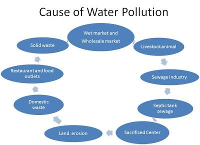 FREE Essay on Pollution: Causes, Effects and Damages